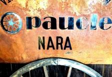 Pauole Nara