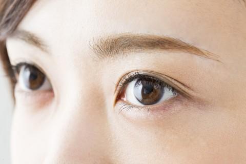 Eye brow salon éden
